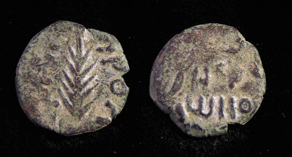 13.01.04.A. COIN BY FESTUS WITH PALM BRANCH
