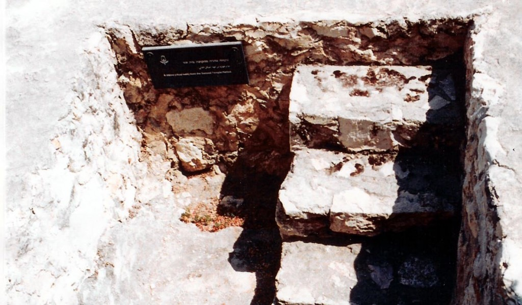 05.05.05.D. FIRST CENTURY MIKVAH