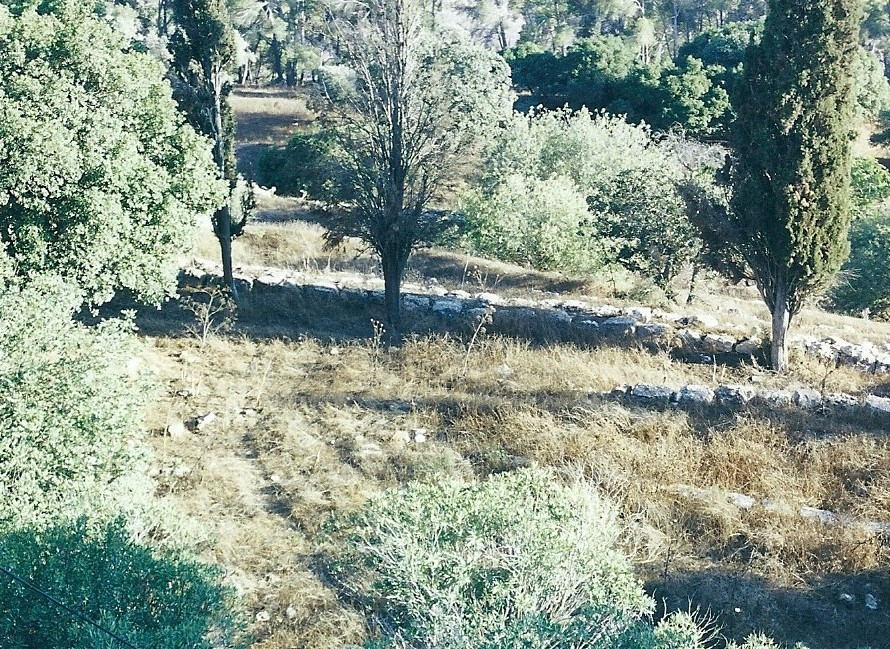 11.01.02.A. FORTIFICATION RUINS BUILT BY JOSEPHUS ON MOUNT TABOR (2)